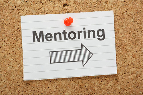 human-resource-management-hr-mentoring