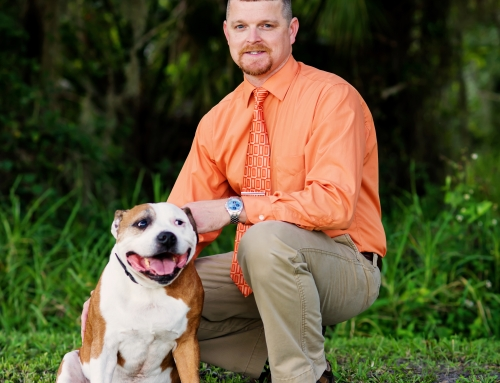 December Interview: Dr. Steven Groves on… Pets and Holiday Decorations – Preparations and Precautions!
